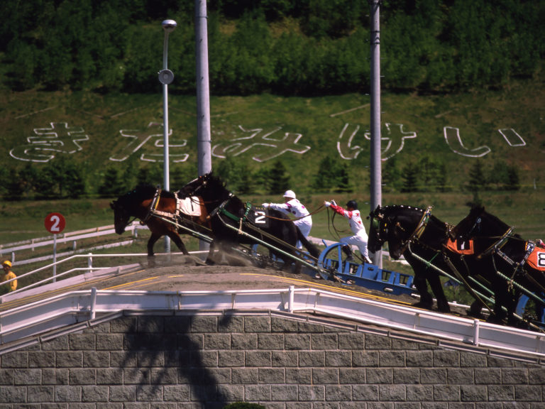 Banei horse racing in Obihiro city
